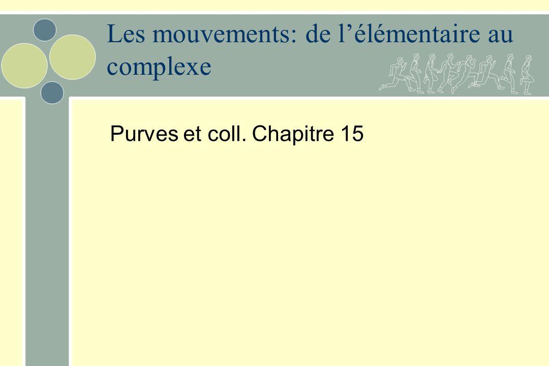 Les mouvements: de l'élémentaire au complexe