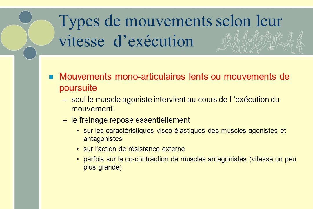 Types de mouvements selon leur vitesse d'exécution