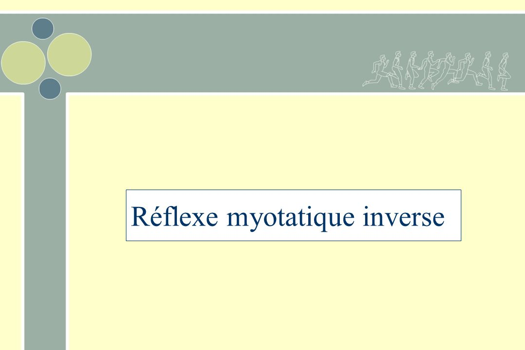 Réflexe myotatique inverse
