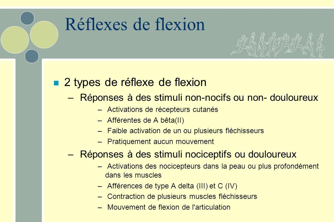Réflexes de flexion 2 types de réflexe de flexion