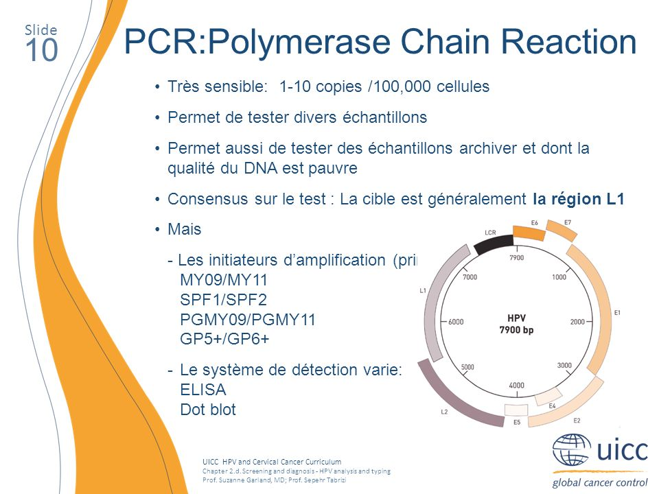 PCR:Polymerase Chain Reaction