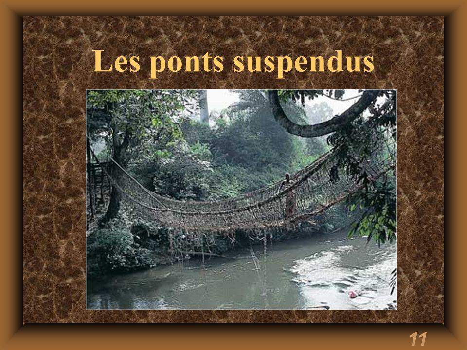 Les ponts suspendus