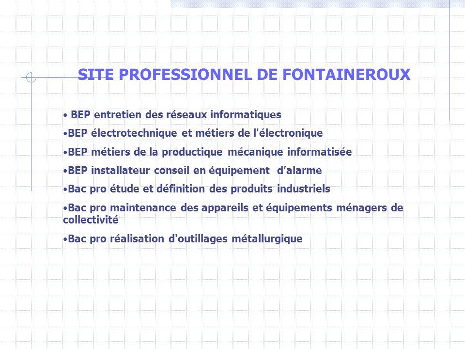 SITE PROFESSIONNEL DE FONTAINEROUX