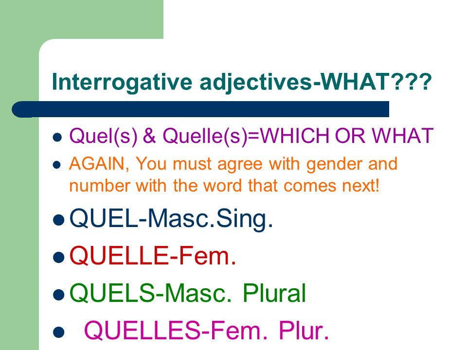 Interrogative adjectives-WHAT