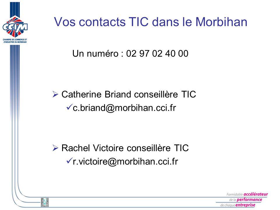 Vos contacts TIC dans le Morbihan