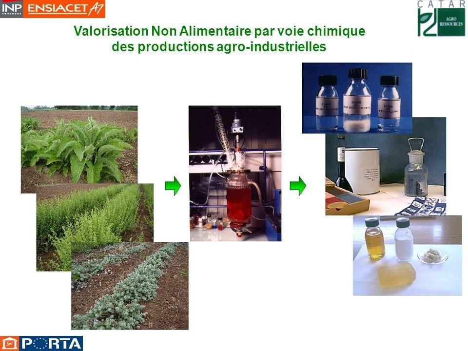 Valorisation Non Alimentaire par voie chimique