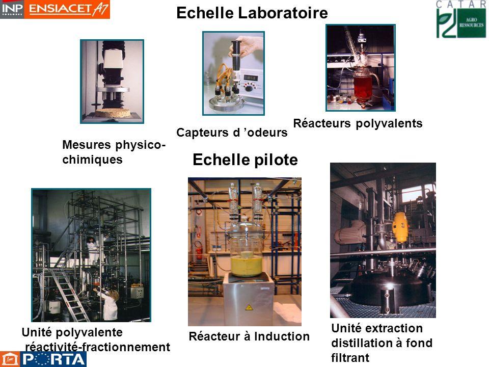 Echelle Laboratoire Echelle pilote Réacteurs polyvalents