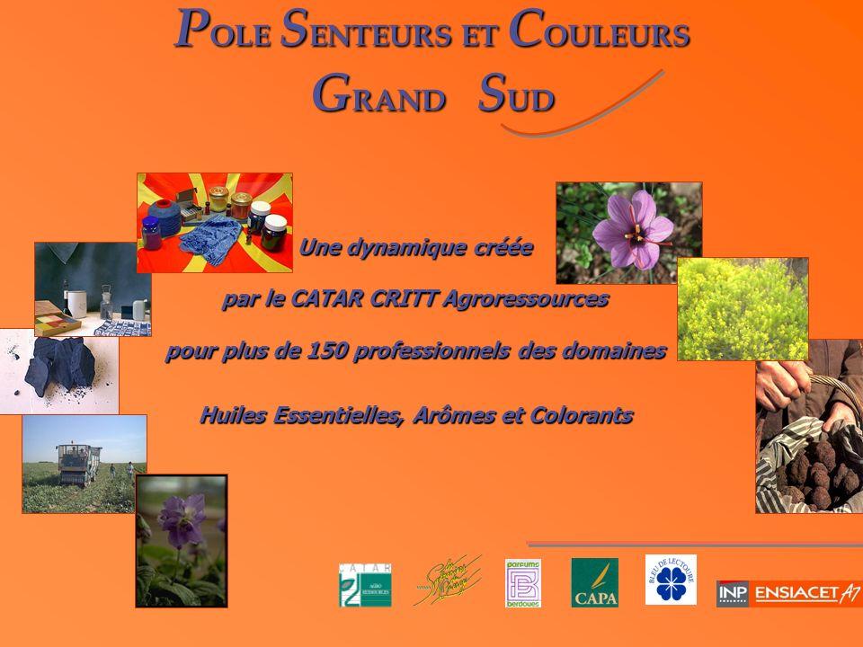 POLE SENTEURS ET COULEURS GRAND SUD