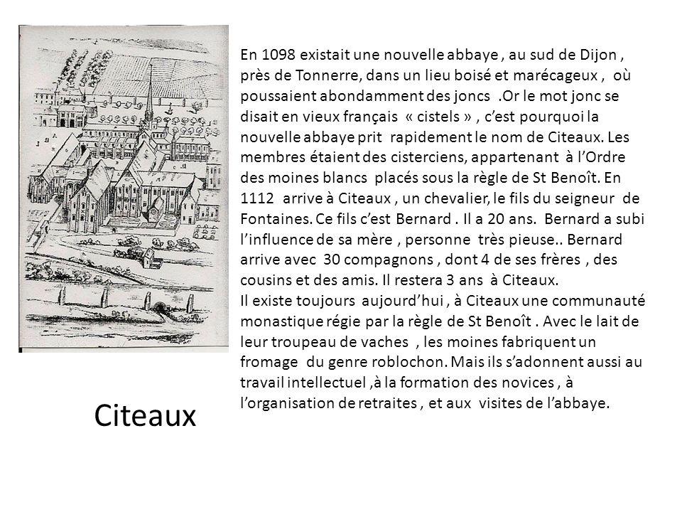 En 1098 existait une nouvelle abbaye , au sud de Dijon , près de Tonnerre, dans un lieu boisé et marécageux , où poussaient abondamment des joncs .Or le mot jonc se disait en vieux français « cistels » , c'est pourquoi la nouvelle abbaye prit rapidement le nom de Citeaux. Les membres étaient des cisterciens, appartenant à l'Ordre des moines blancs placés sous la règle de St Benoît. En 1112 arrive à Citeaux , un chevalier, le fils du seigneur de Fontaines. Ce fils c'est Bernard . Il a 20 ans. Bernard a subi l'influence de sa mère , personne très pieuse.. Bernard arrive avec 30 compagnons , dont 4 de ses frères , des cousins et des amis. Il restera 3 ans à Citeaux.