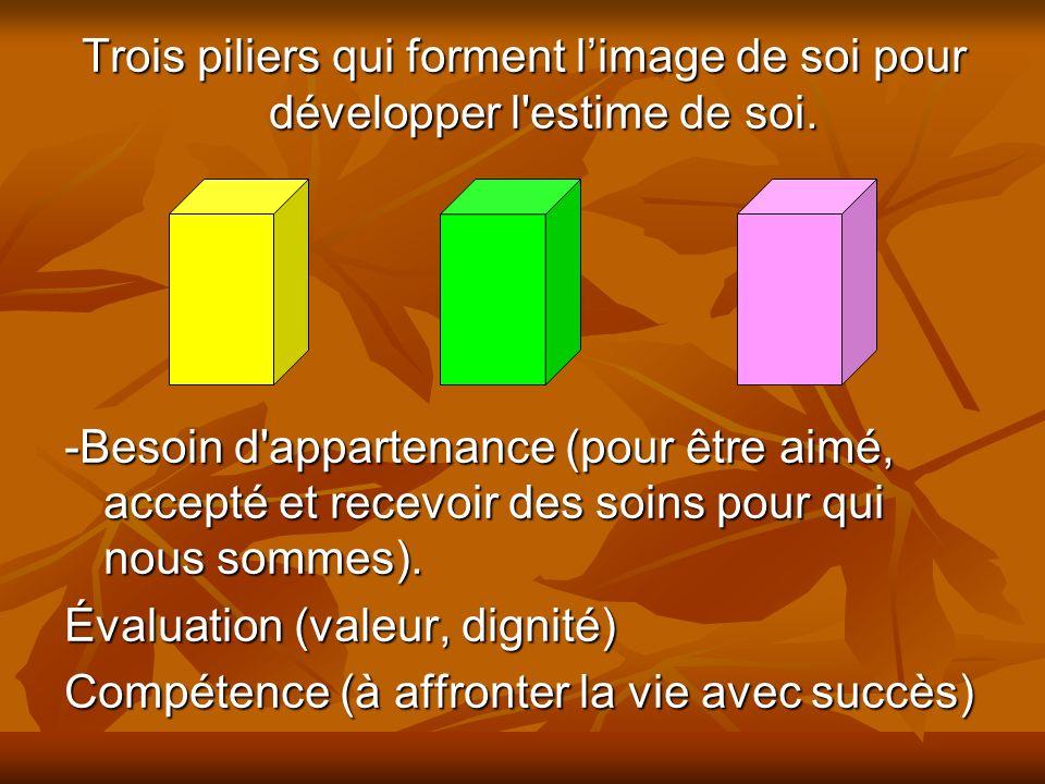 Trois piliers qui forment l'image de soi pour développer l estime de soi.