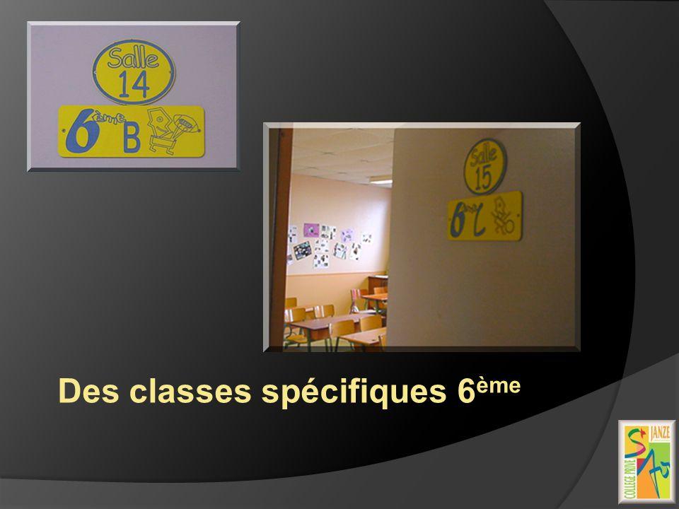 Des classes spécifiques 6ème
