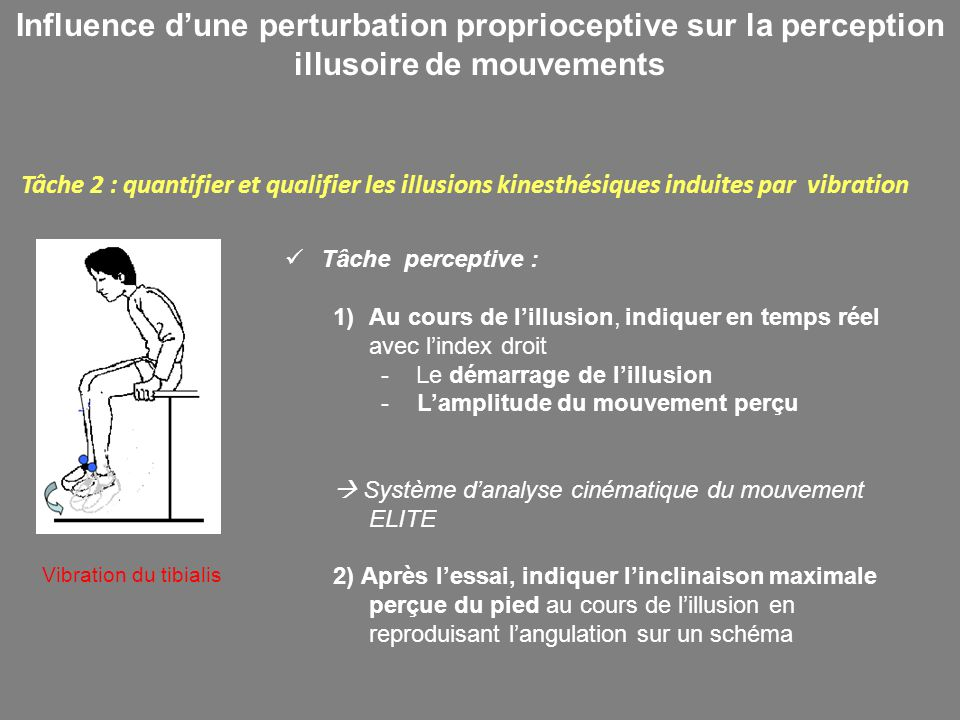 Influence d'une perturbation proprioceptive sur la perception illusoire de mouvements