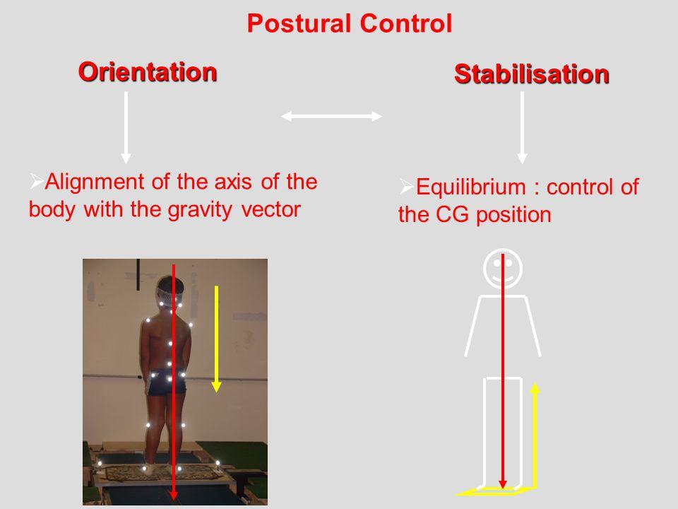 Postural Control Orientation Stabilisation