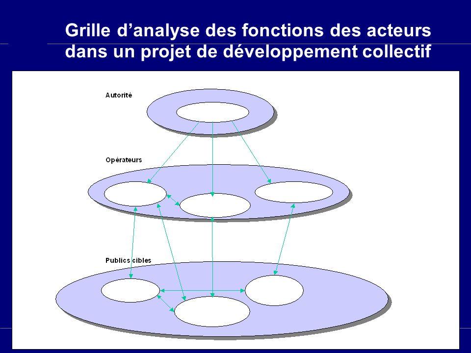 Grille d'analyse des fonctions des acteurs dans un projet de développement collectif