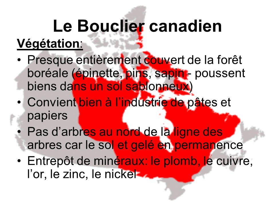 Le Bouclier canadien Végétation: