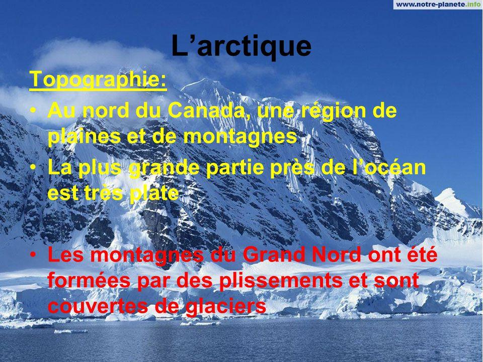 L'arctique Topographie: