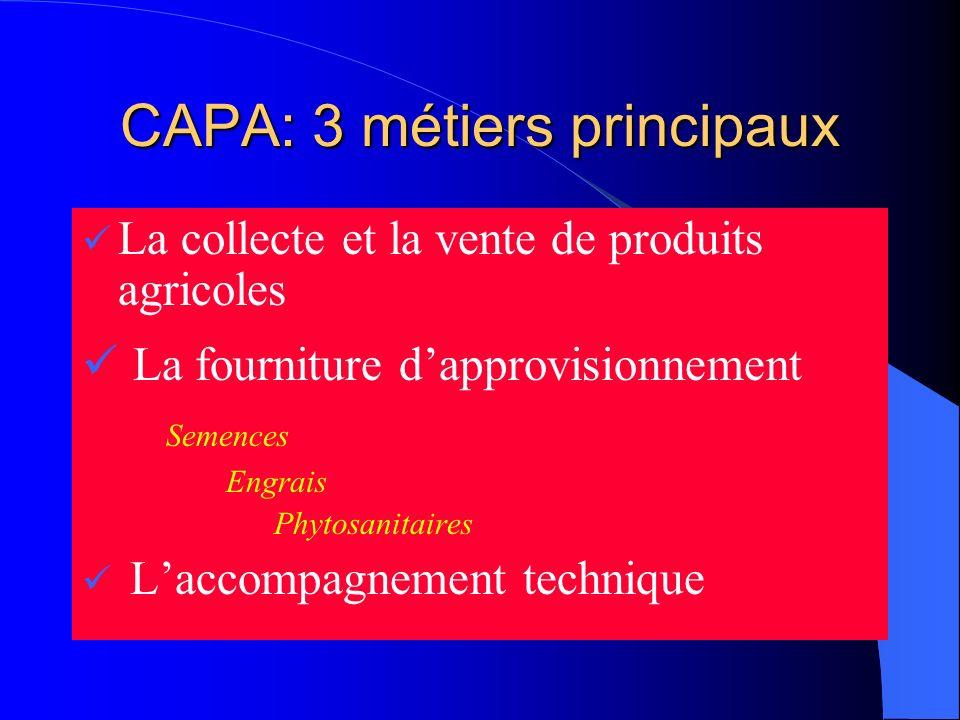 CAPA: 3 métiers principaux