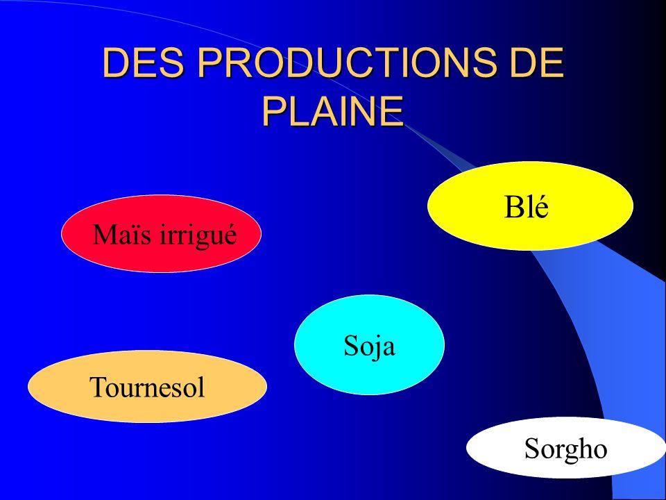 DES PRODUCTIONS DE PLAINE