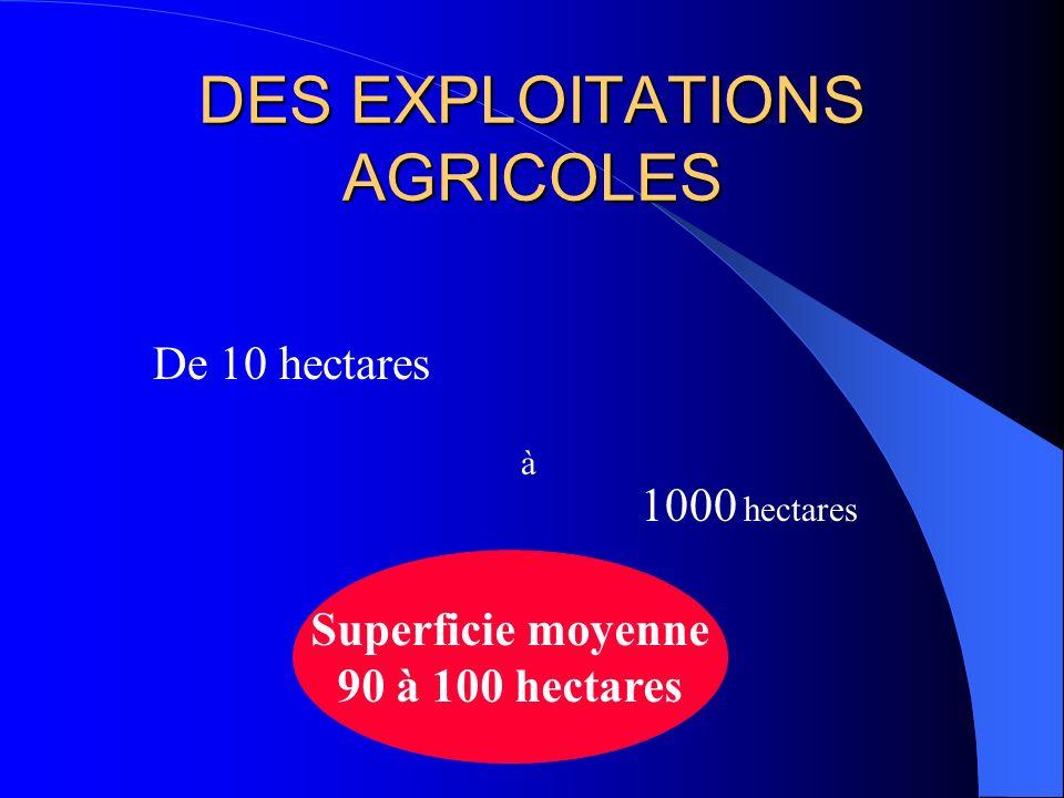 DES EXPLOITATIONS AGRICOLES
