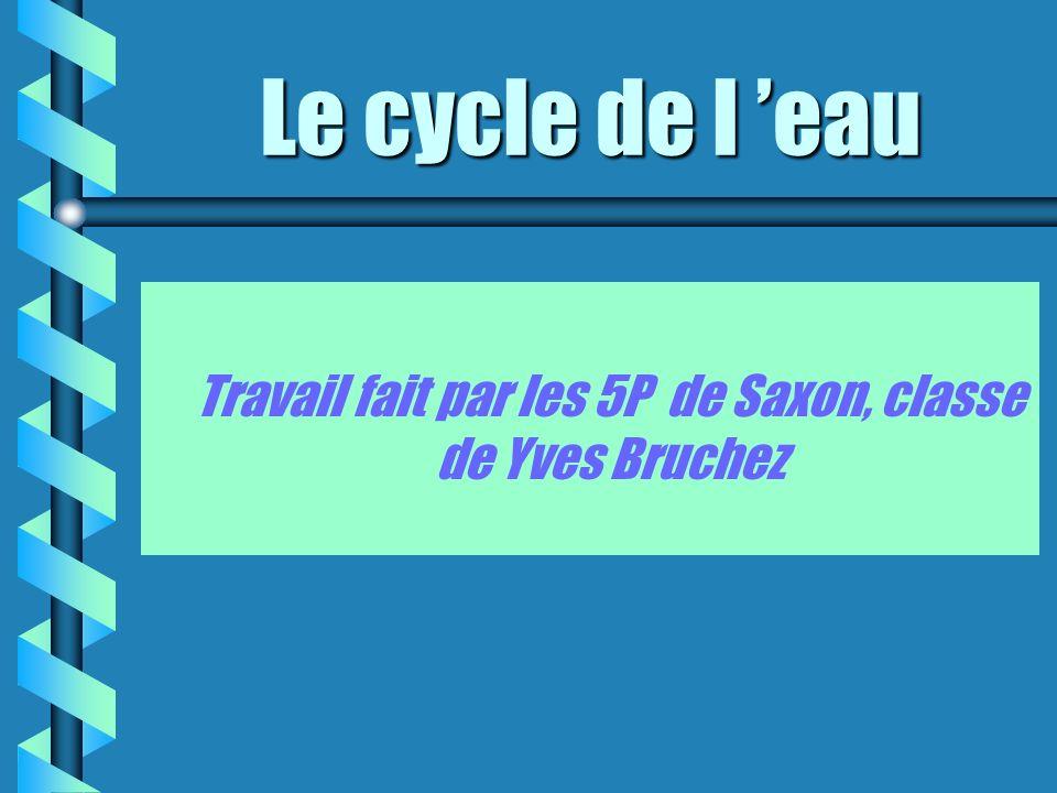Travail fait par les 5P de Saxon, classe de Yves Bruchez