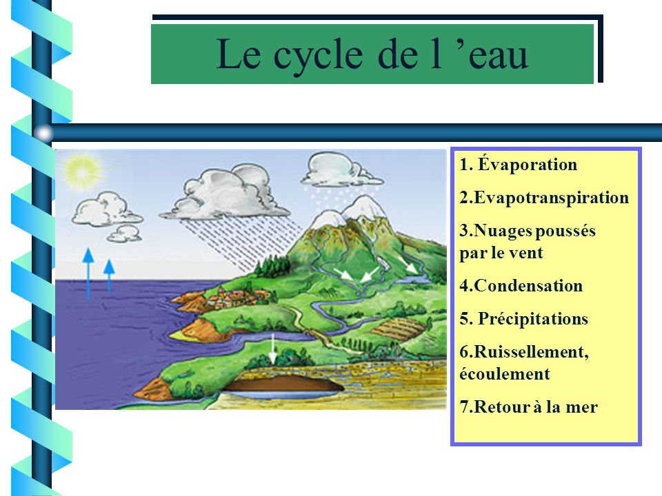 Le cycle de l 'eau 1. Évaporation 2.Evapotranspiration