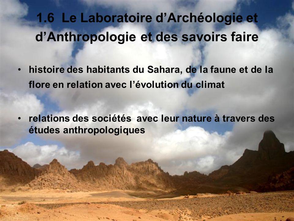 1.6 Le Laboratoire d'Archéologie et d'Anthropologie et des savoirs faire