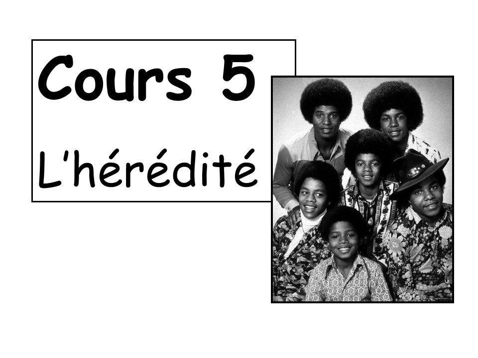 Cours 5 L'hérédité