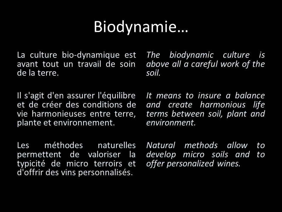 Biodynamie… La culture bio-dynamique est avant tout un travail de soin de la terre.