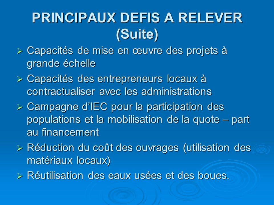 PRINCIPAUX DEFIS A RELEVER (Suite)