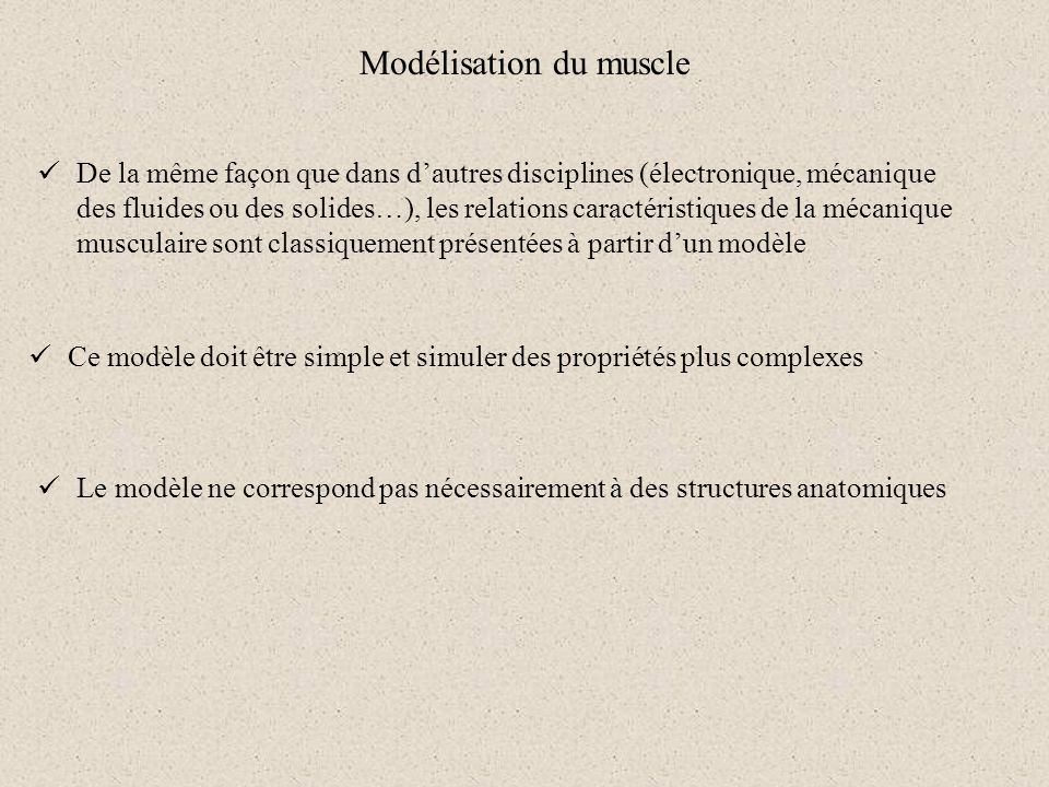 Modélisation du muscle