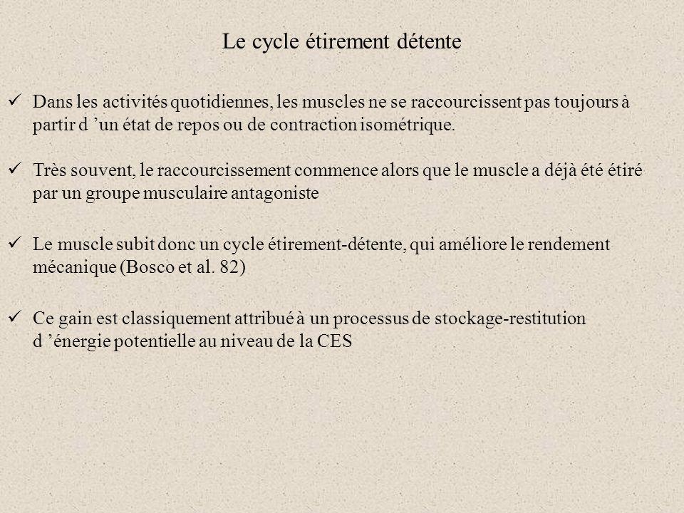 Le cycle étirement détente