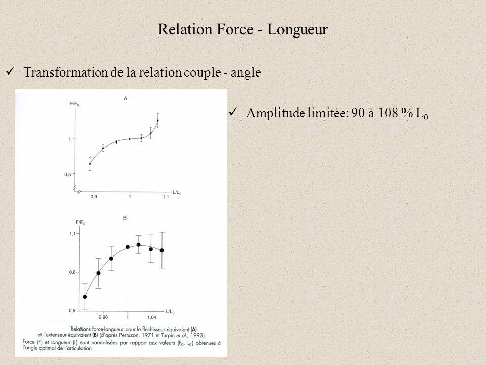 Relation Force - Longueur