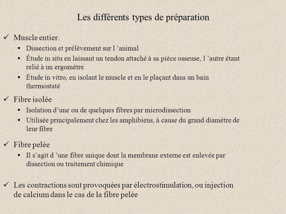 Les différents types de préparation