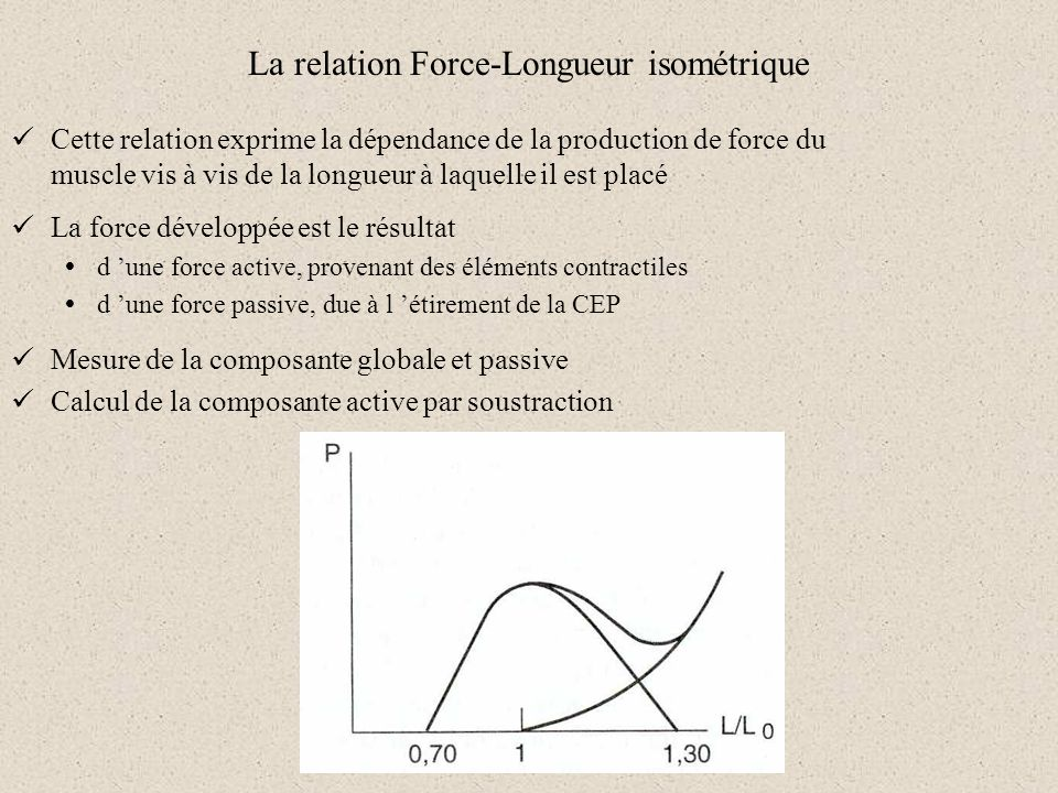 La relation Force-Longueur isométrique