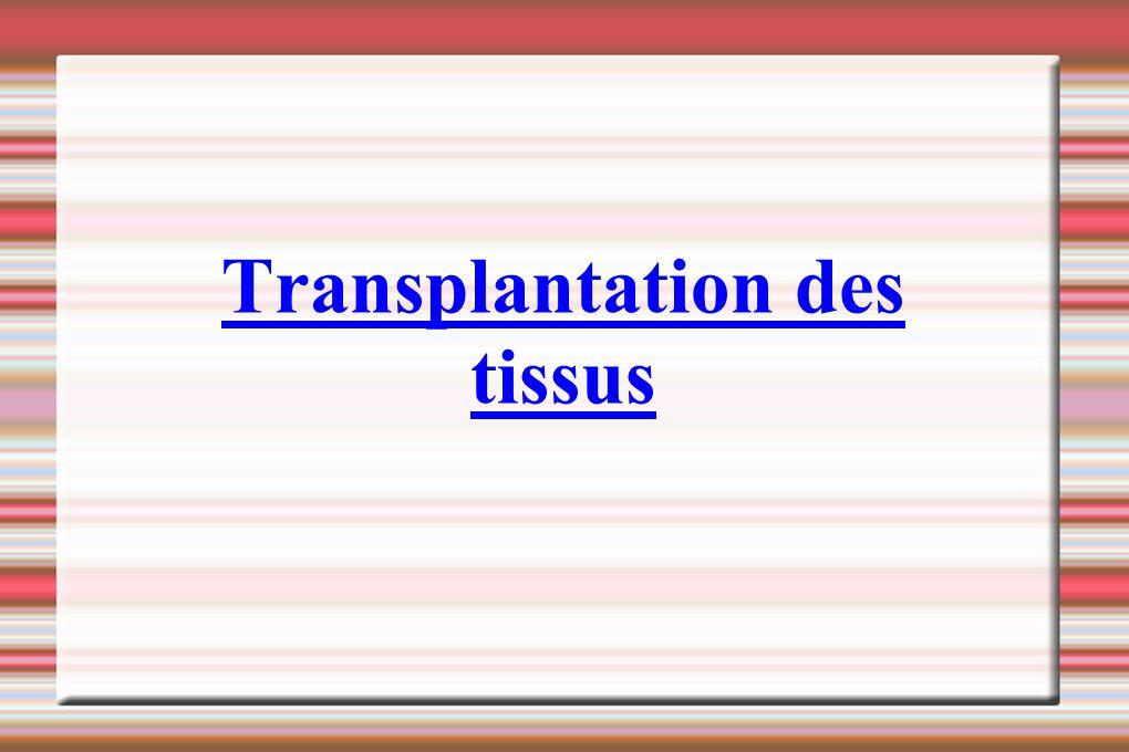 Transplantation des tissus