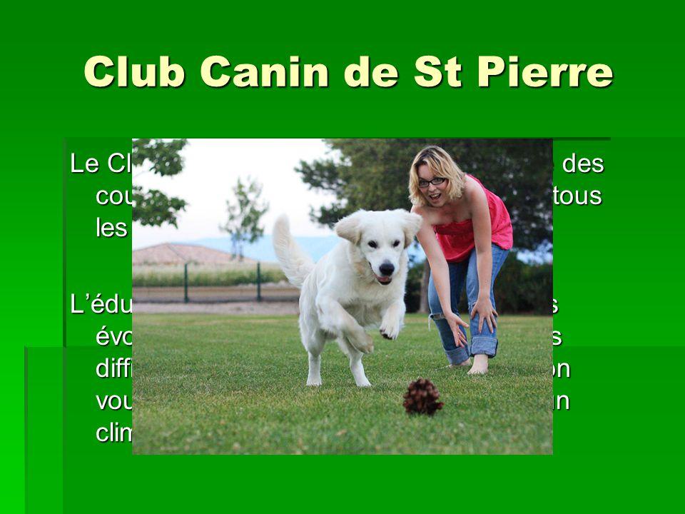 Club Canin de St Pierre Le Club Canin de St Pierre vous propose des cours d'éducation canine accessible à tous les chiens à partir de 2 mois.