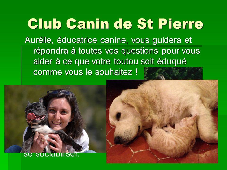 Club Canin de St Pierre La marche au pieds et le rappel n'auront