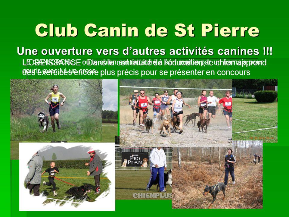 Une ouverture vers d'autres activités canines !!!