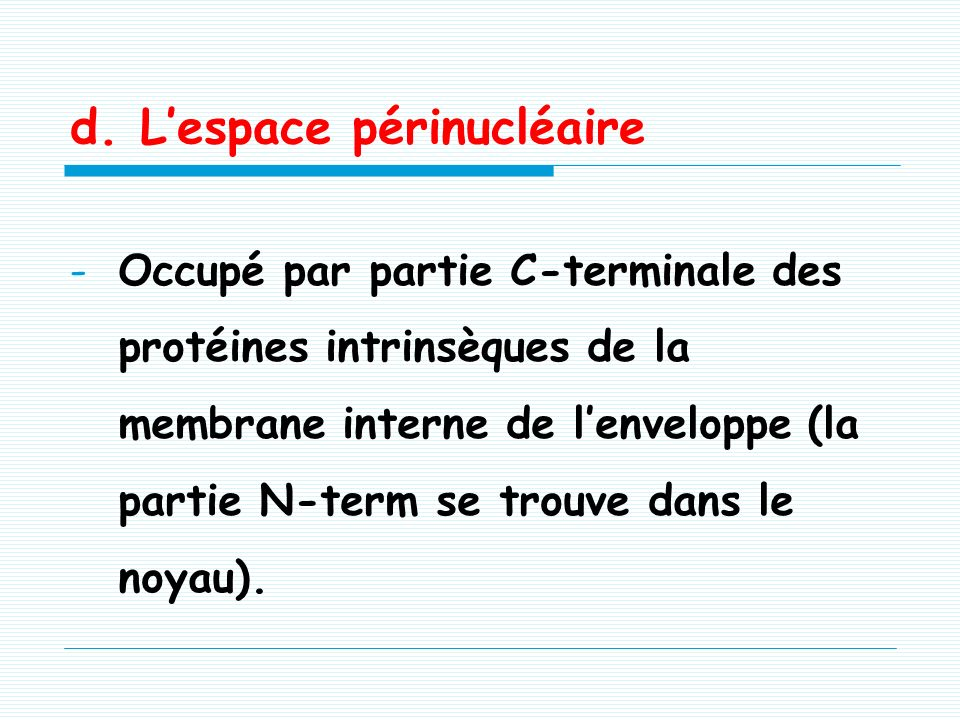 d. L'espace périnucléaire