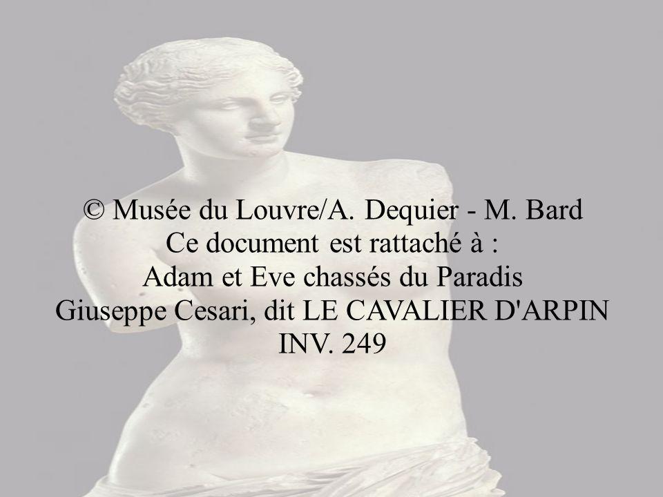 © Musée du Louvre/A. Dequier - M
