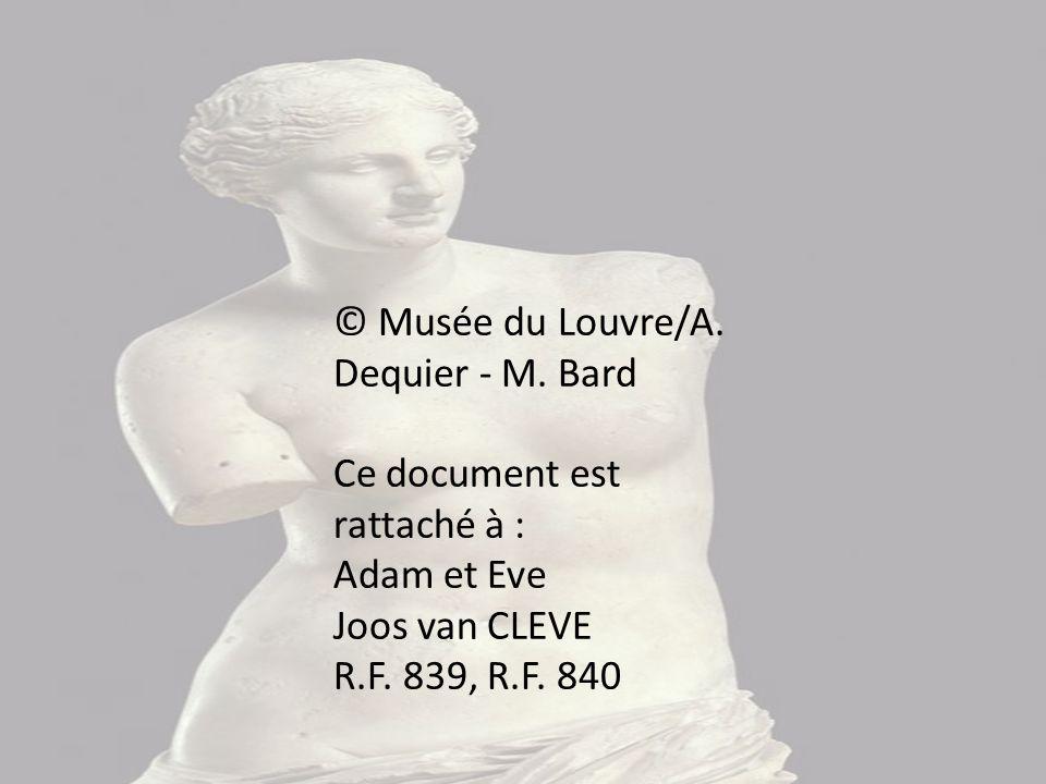 © Musée du Louvre/A. Dequier - M. Bard
