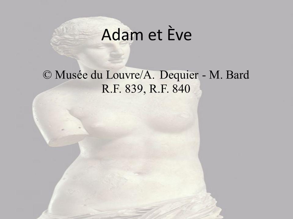 © Musée du Louvre/A. Dequier - M. Bard R.F. 839, R.F. 840