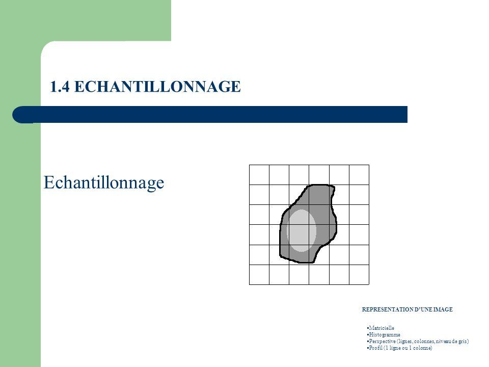 Echantillonnage 1.4 ECHANTILLONNAGE REPRESENTATION D'UNE IMAGE