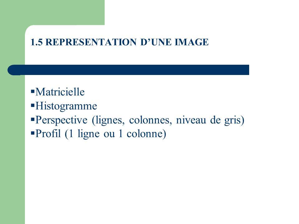 1.5 REPRESENTATION D'UNE IMAGE