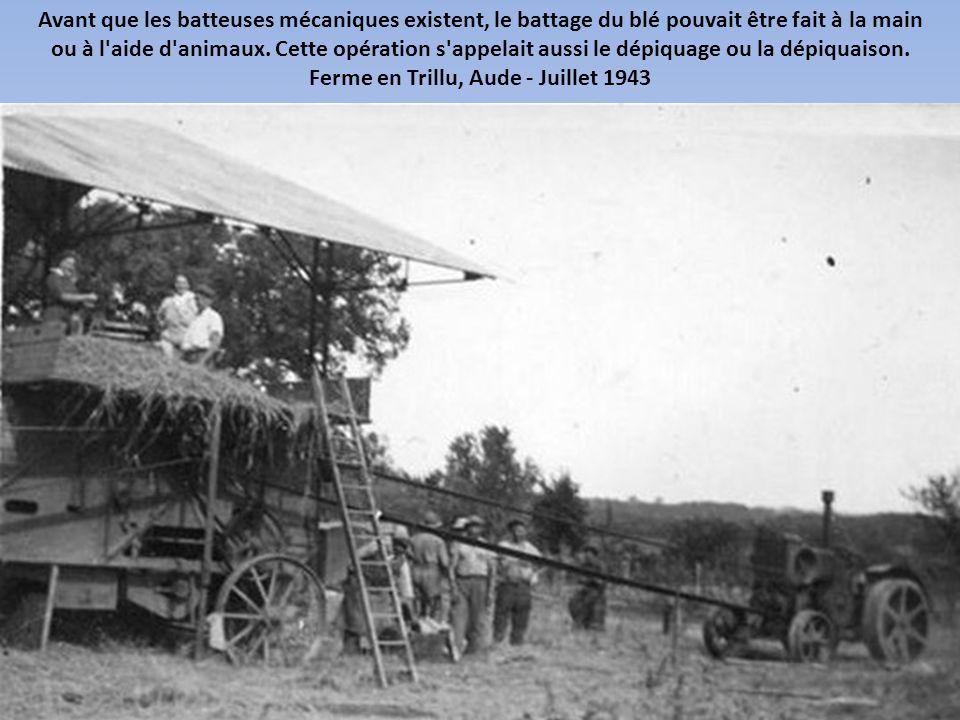 Ferme en Trillu, Aude - Juillet 1943