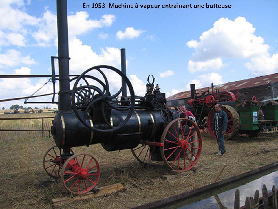 En 1953 Machine à vapeur entrainant une batteuse