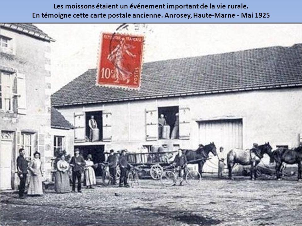 Les moissons étaient un événement important de la vie rurale.