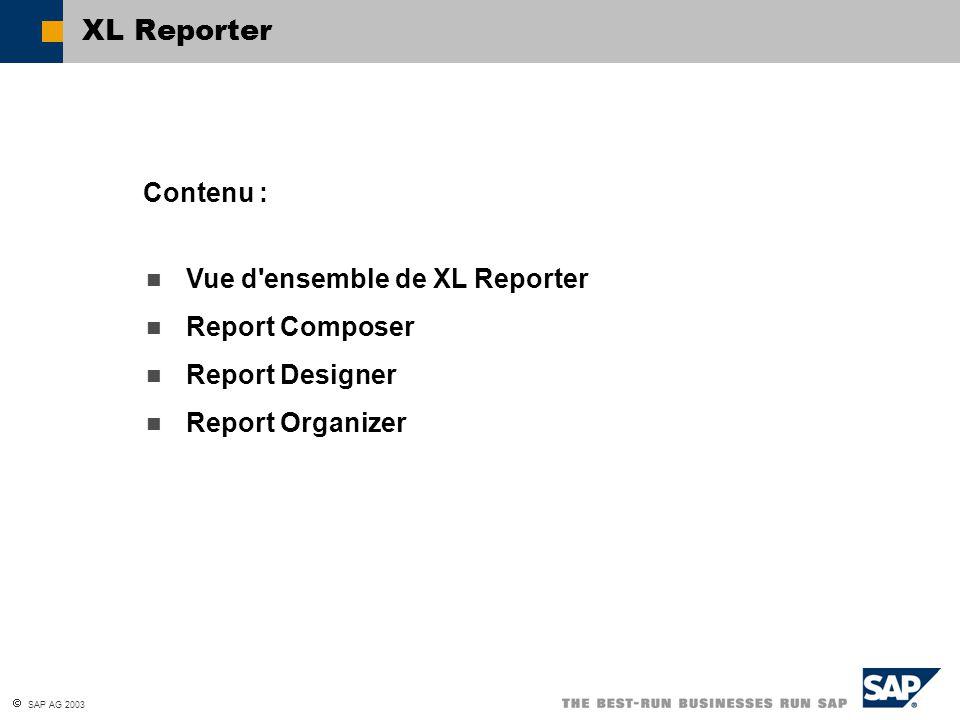 XL Reporter Contenu : Vue d ensemble de XL Reporter Report Composer