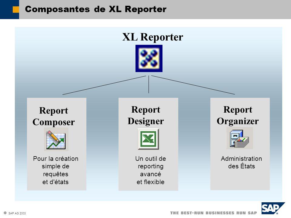 Composantes de XL Reporter