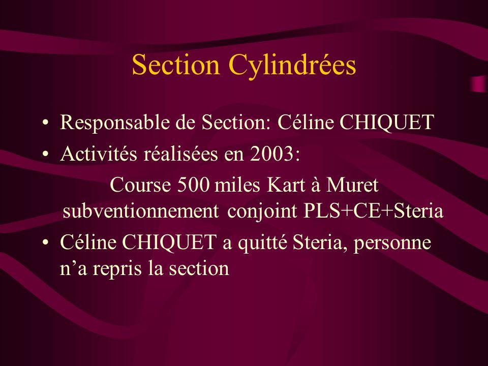 Course 500 miles Kart à Muret subventionnement conjoint PLS+CE+Steria
